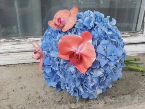 orhidee rosie si hortensie albastra