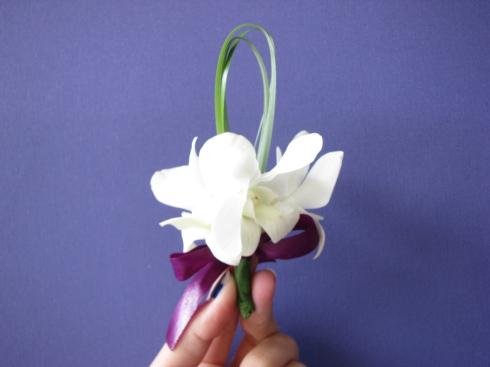 cocarde orhidee alba